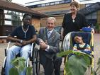 News: Sunflowers brighten children's gardens